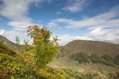 caucasus Himmel- och bergrönn Arkivfoto