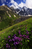 Caucasus Landscape Stock Photography
