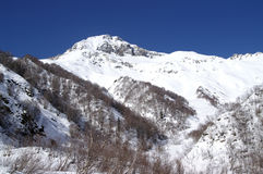 Caucasus Mountains. Dombaj. Snow-capped mountains Stock Photos
