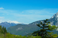 Caucasus Mountains in Abkhazia. A view of the Caucasus Mountains in Abkhazia Royalty Free Stock Image