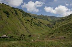 Caucasus mountains, canyon of Argun. Road to Shatili Royalty Free Stock Photos