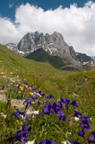 Caucasus Mountains - Chaukhi mountain group Stock Photography