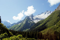 Caucasus Mountains. Dombai Royalty Free Stock Photos