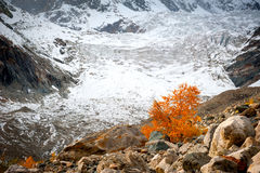 Caucasus Mountains near the glacier Royalty Free Stock Image