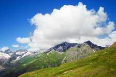 Caucasus Mountains. Region Dombay. Stock Photography