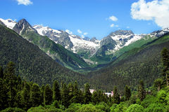 Caucasus Mountains. Region Dombay. Stock Photos