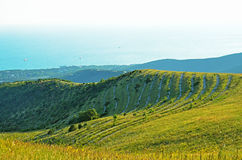Caucasus Mountains in summer Stock Images