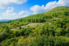Caucasus Mountains in summer, Gelendzhik, Russia Royalty Free Stock Photography