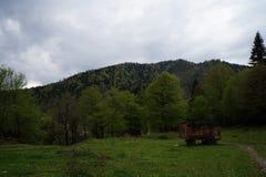 Caucasus reserve Stock Images