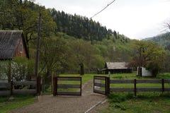 Caucasus reserve Royalty Free Stock Photos