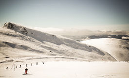 caucasus skidar den dombay regionen lutningen Arkivfoto