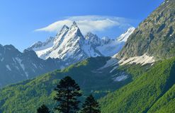 Caucasus summits. This is snow summits in Caucasus mountains in summer Stock Photography