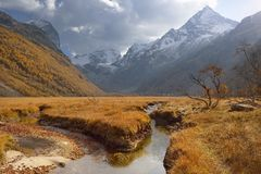 Caucasus valley. This is colorful meadow in Caucasus mountains in autumn Royalty Free Stock Photos