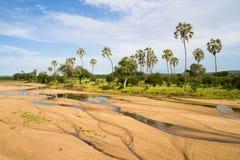 Cauce del río de Ruaha Fotografía de archivo libre de regalías