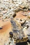 """Cauce del río en el  de Riotinto†de los """"Minas, Huelva Foto de archivo"""
