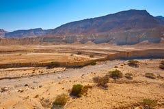 Cauce del río seco imagen de archivo