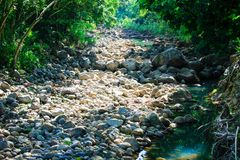 Cauce del río seco, valle de Waimea, Oahu, Hawaii foto de archivo