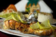 Cauda de lagosta do Cararibe foto de stock royalty free