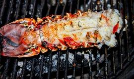 Cauda de lagosta que cozinha na grade do carvão vegetal com manteiga e especiarias imagens de stock royalty free
