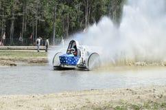 Cauda do galo do carrinho de pântano Foto de Stock
