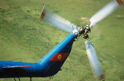 Cauda do helicóptero Imagens de Stock