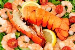Caudas de lagosta cozinhadas com salada fresca foto de stock