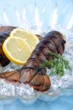 Caudas de lagosta cruas Foto de Stock