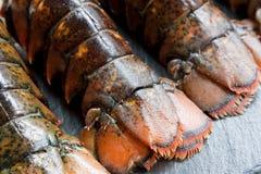 Caudas de lagosta cruas Fotos de Stock