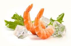Caudas dos camarões fotos de stock royalty free