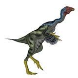 Caudipteryx die 3D dinosauwalking - geef terug Stock Afbeeldingen