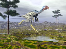 Caudipteryx dinoasaur - 3D render Royalty Free Stock Photos