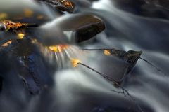 Caught. Small cascade with autumn leaves and twigs stock photo