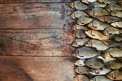 Caught carp fish on wood. Catching freshwater fish on wood background. A lot of bream fish, crucian or roach on natural. Fresh caught carp fish on wood. Catching Royalty Free Stock Photography