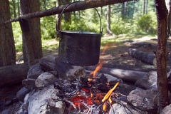Cauldron boils on the fire in the forest. In marching a saucepan preparing food. Adventure tourism, camping, cooking on a fire. Survival in the forest. Stalker Stock Images