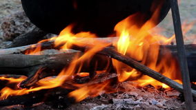 Cauldron on campfire stock video