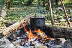 Cauldron on fire in forest Stock Images