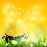 Patricks Day and gold of leprechaun in grass on yellow sunny bac Stock Photo