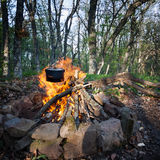 Cauldron over burning campfire Royalty Free Stock Photo