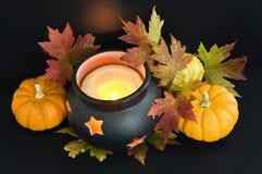 Cauldron and pumpkins