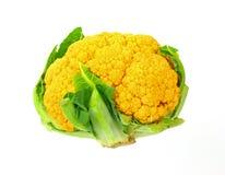 cauliflower вниз смотря померанцов Стоковые Фото