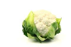 cauliflower свежий Стоковое фото RF