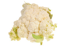 cauliflower свежий Стоковая Фотография