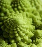 cauliflower странный Стоковые Изображения