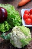 cauliflower холстины младенца коричневый Стоковое фото RF