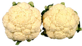 Cauliflower Stock Images