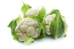 cauliflower 2 Стоковое Изображение
