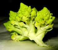 Cauliflower. Part of fresh green cauliflower lying in the darkness Stock Image