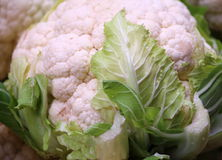 Cauliflower Стоковое Изображение RF