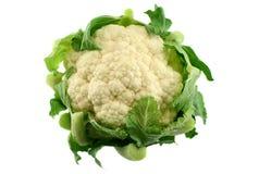 cauliflower 3 свежий Стоковая Фотография