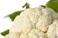 Cauliflower royalty free stock photo